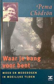 Waar je bang voor bent - Pema Chodron (ISBN 9789021597096)