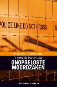 Onopgeloste moordzaken - S. Borgerhoff, K. Lamberigts (ISBN 9789077941102)