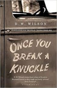 Once you break a knuckle - D.W. Wilson (ISBN 9781408831311)