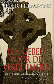 Een gebed voor de verdoemden - Peter Tremayne (ISBN 9789086060399)
