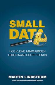 Small Data - Martin Lindstrom (ISBN 9789400507319)