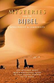 Mysteries van de Bijbel - Borgerhoff ..., Lamberigts ... (ISBN 9789077941263)