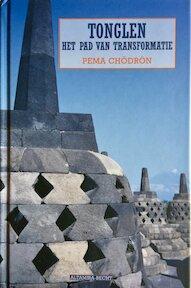 Tonglen - Pema Chodron (ISBN 9789069635682)