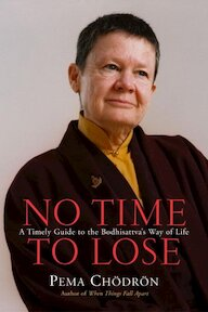 No Time to Lose: a timely guide to the way of the Bodhisattva - Pema Chödrön (ISBN 9781590301357)