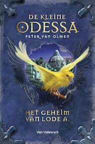 Het geheim van Lode A - Peter van Olmen (ISBN 9789461316370)