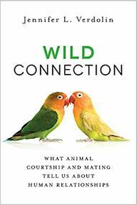 Wild Connection - Jennifer Laura Verdolin (ISBN 9781616149468)