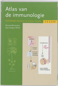 Sesam Atlas van de immunologie - Burmester (ISBN 9789055744732)