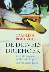 De duivelsdriehoek - Carolien Roodvoets (ISBN 9789069639482)