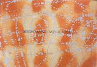 Beschouwing over de koepel - Annet de Groot (ISBN 9789090149929)