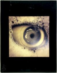 Known Unknowns - Charles Saatchi (ISBN 9781861543608)