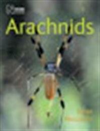 Arachnids - Janet Beccaloni (ISBN 9780565092207)