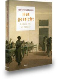 Het gesticht - Joost Vijselaar (ISBN 9789085069669)