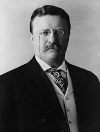 Theodore Roosevelt - Theodore Roosevelt (ISBN 9780306802324)
