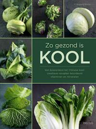 Zo gezond is kool - Hildegard Moller (ISBN 9789044745207)