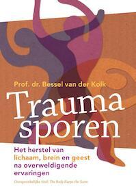 Het lichaam houdt de stand bij - Bessel van der Kolk (ISBN 9789463160315)