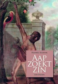 Aap zoekt zin - Pouwel Slurink (ISBN 9789491693410)