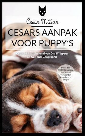Cesar's aanpak voor puppy's - Cesar Millan