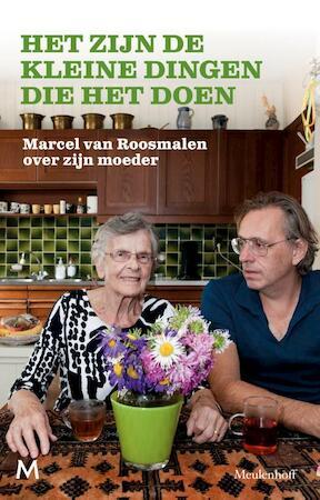 Het zijn de kleine dingen die het doen - Marcel van Roosmalen