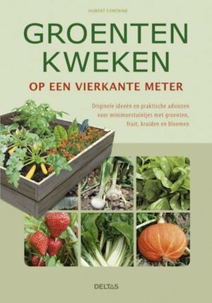 Groenten kweken op een vierkante meter - Hubert Fontaine