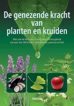 100 bijzondere remedies met kruiden en planten - Penelope Ody