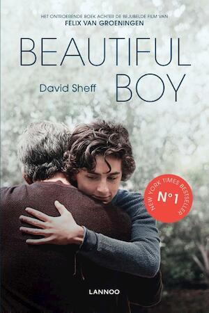 Beautiful Boy - David Sheff