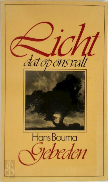 Licht dat op ons valt - Hans Bouma