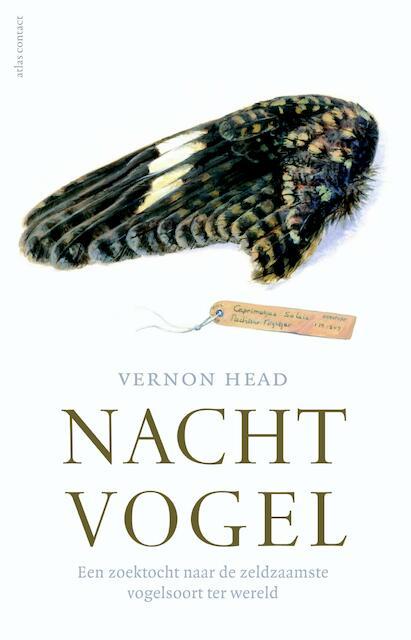 Nachtvogel - Vernon Head