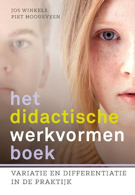 Het didactische werkvormenboek - Piet Hoogeveen, Jos Winkels