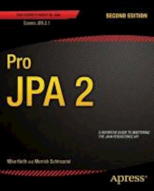Pro JPA 2 - Mike Keith