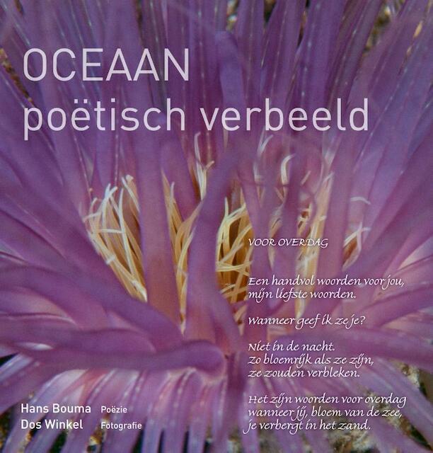Oceaan - Hans Bouma