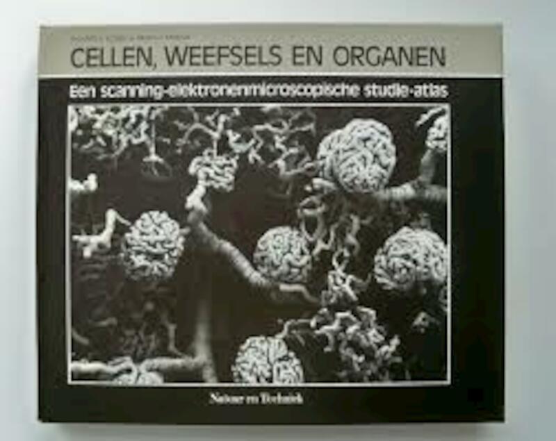 Cellen weefsels en organen - Kessel